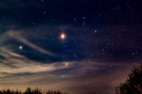 """Scorpius Rising,"" with Saturn and Mars"